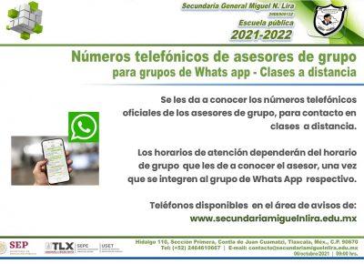 Números telefónicos de asesores de grupo para grupos de Whats app – Clases a distancia